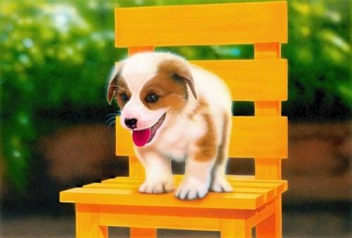【印刷物】ポストカード:yellow chair