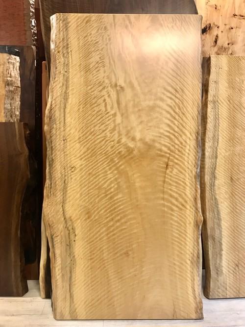 ≪青山店≫シカモア トラ杢 一枚板 1800×850-900×55 20342