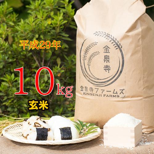 【H29年 玄米】富山県産 金泉寺ファームズのコシヒカリ 10kg
