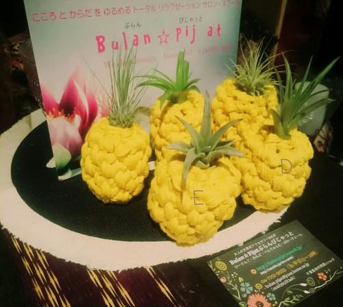 手編みのエアープランツと鉢 パイナップル風 鉢カバー