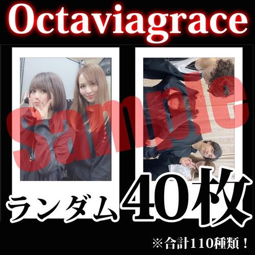 【チェキ・ランダム40枚】Octaviagrace