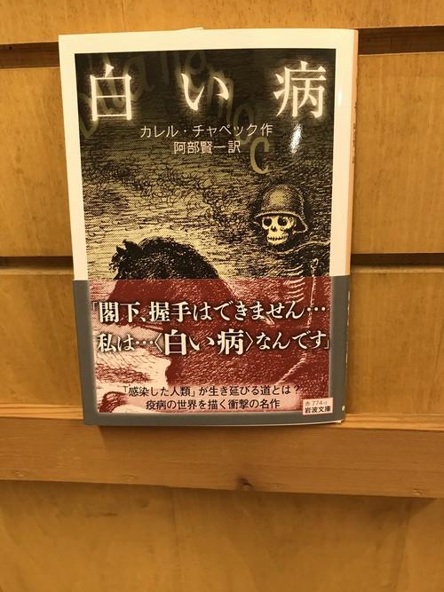 【新刊書】カレル・チャペック『白い病』(岩波書店)