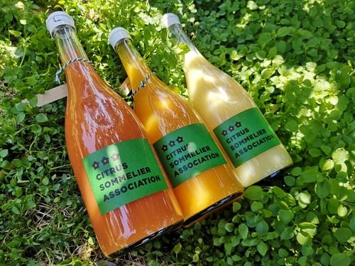【3本 濃厚あざやか三色】柑橘ジュースセット(南津海・はるか・ブラッドオレンジ)