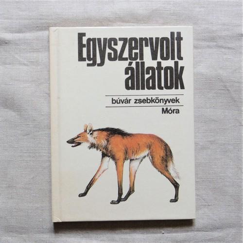 #エア蚤の市 ハンガリーのポケット図鑑①