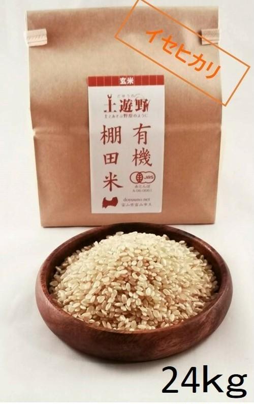 《令和2年産》有機棚田米イセヒカリ 玄米24㎏