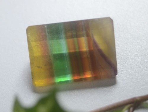 フローライト(CASA BLESSING®)fluo-0020