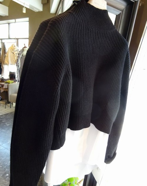 tomoumi ono  short sweter