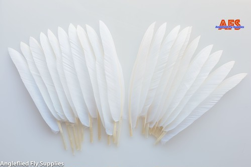 【 AFS 】White Goose Quils 4 pcs.  ( Perfect Match 2 pairs ) / パーフェクトマッチ2ペア