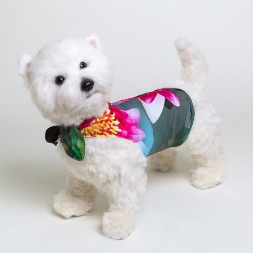 jibun-fuku DOG 【チューブドレス】DOGB201821