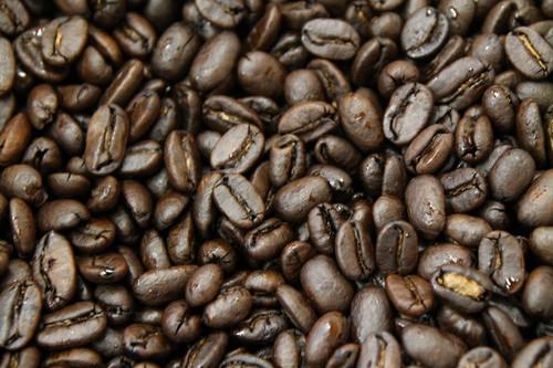 コーヒー豆:インドネシア マンデリン ミトラG1 600円/100g