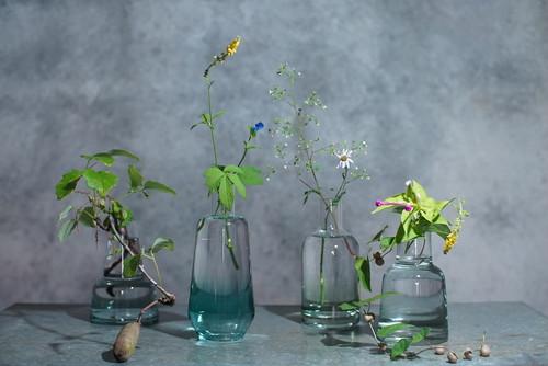 切り花付きグラデーション硝子花器(4種)