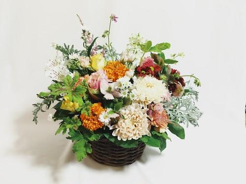 アレンジメント(Flower Arrangement)