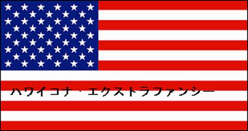 ストレート生豆【ハワイコナ・エクストラファンシー】100g(送料込み)