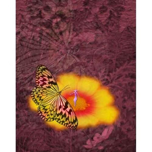 蝶と精霊・10