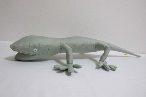 ニホンヤモリ Japanese gecko