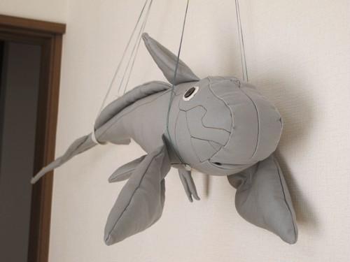 ギンザメ Silver chimaera