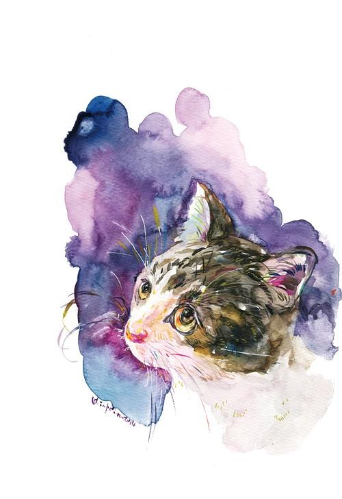 [153]猫