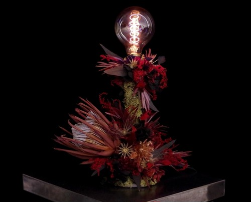 KING Protea red&red lamp