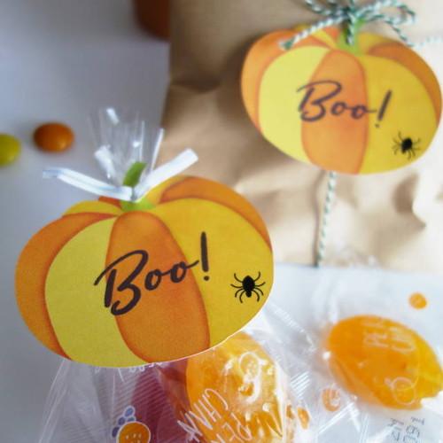 ハロウィン★ラッピング用タグ かぼちゃ型 10枚入 大人可愛いシンプルデザイン