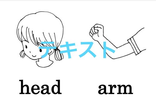 Body parts 絵+英単語 フラッシュカードデータ(白黒)