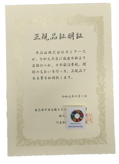 【1個】正規品証明書付SDGsピンバッジ『SDGs EVO』