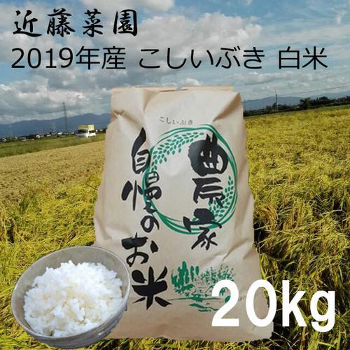 2020年 新潟県産 令和2年産 こしいぶき 白米 20kg 近藤菜園
