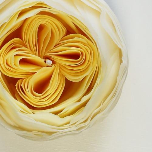 ハロウィン彩る 天然の蜜蝋 *Baby Romantica きいろの薔薇キャンドル