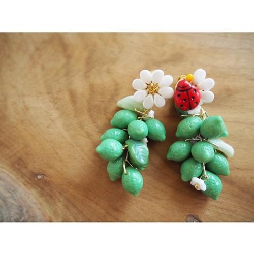 Ladybug & Lime