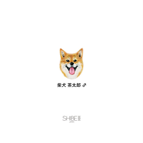 iPhone CASE SHIBE SMILE 専用オリジナルメッセージ