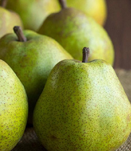 Pear  ラ・フランスのジャム
