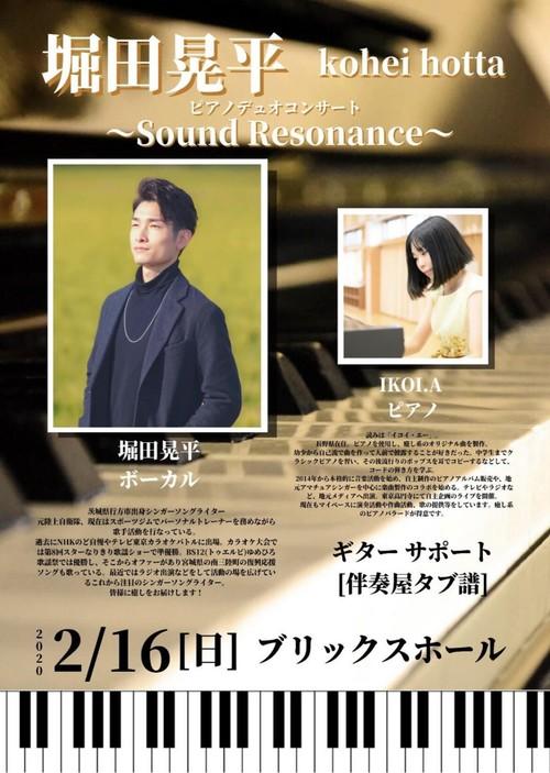 【Blu-ray】堀田晃平ピアノデュオコンサート~Sound Resonance~ 特典映像アリ!