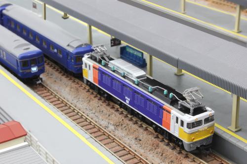 T015-6 EF81形電気機関車 99号機 カシオペア塗装