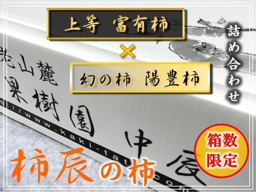 """箱数限定‼ """"柿辰""""の柿 中玉 6玉 詰め合わせ"""