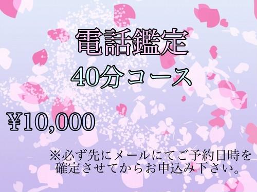 電話鑑定(40分コース)