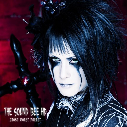 THE SOUND BEE HD / GHOST WORST FOREST