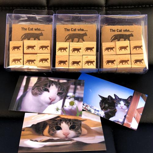木製押しピンカード立て 6個組1セット The Cat who.... オリジナルレーザー彫刻品 TWc0003 (ザ キャット フー 猫 ねこ)