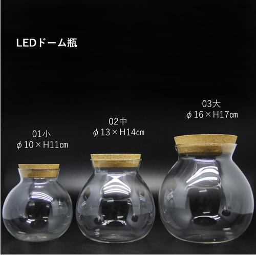 【S】LEDライト付き コルク蓋 ガラスボトル 苔テラリウム 容器 ボトリウム ボトルアクアリウム