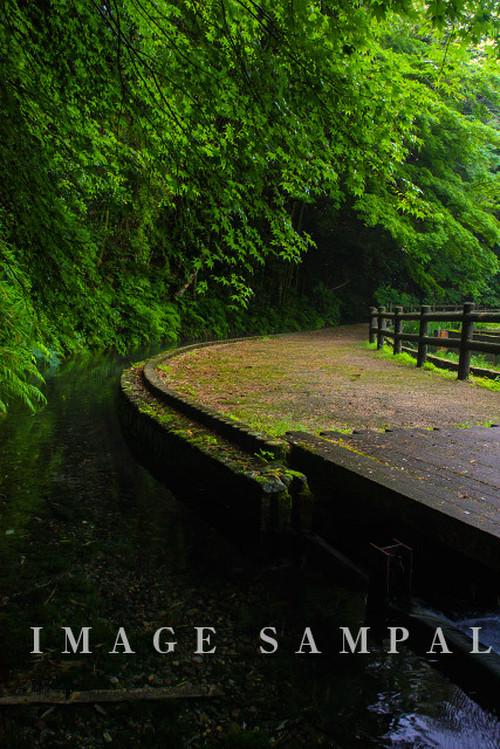 鳥取県米子市淀江町 本宮の泉