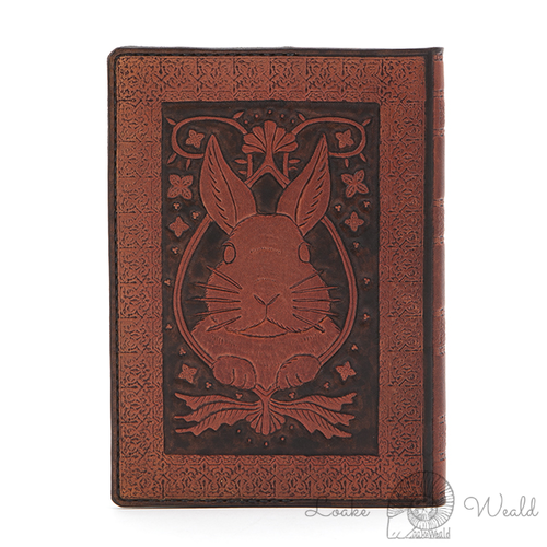 Book cover Rabbit  (Brown)