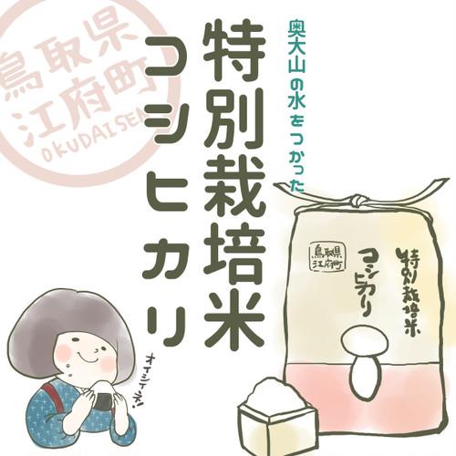 特別栽培米コシヒカリ10㎏【平成29年鳥取県江府町産】