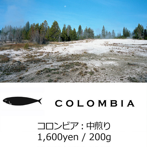 MONTHLY BEANS No.2:COLOMBIA - コロンビア - 中煎り