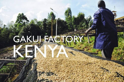 KENYA【GAKUI FACTORY】 -city- 200g