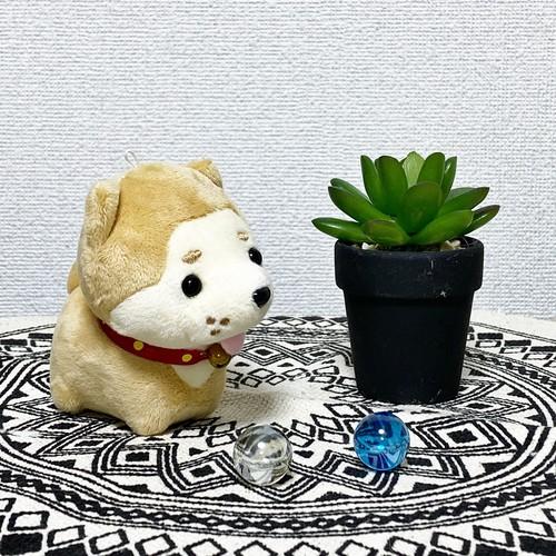 秋田犬 ぬいぐるみストラップ(ポチ)