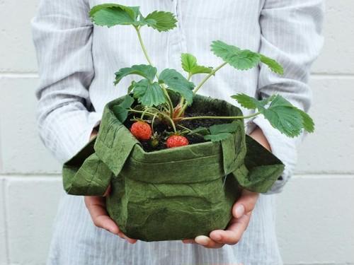 【30%OFF】「root pouch」ルーツポーチ 不織布POT 1H