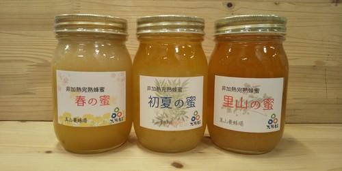真山養蜂場 初夏の蜜(600g)