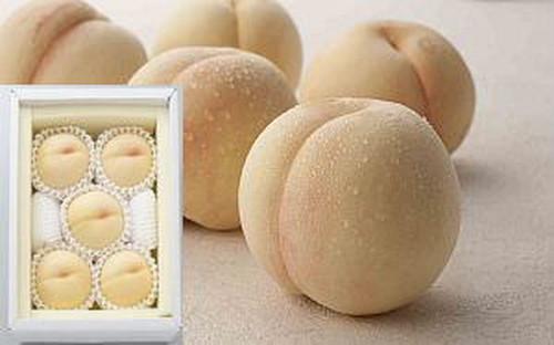 【8月下~】 瀬戸内白桃1.5kg ギフト