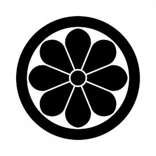 木戸菊 aiデータ