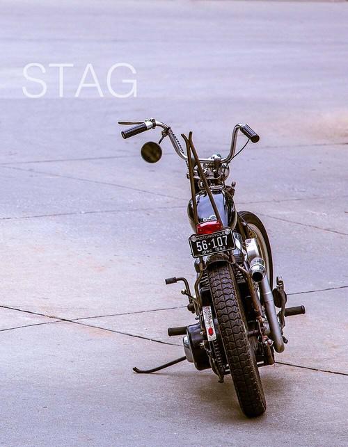 STAG magazine issue#11