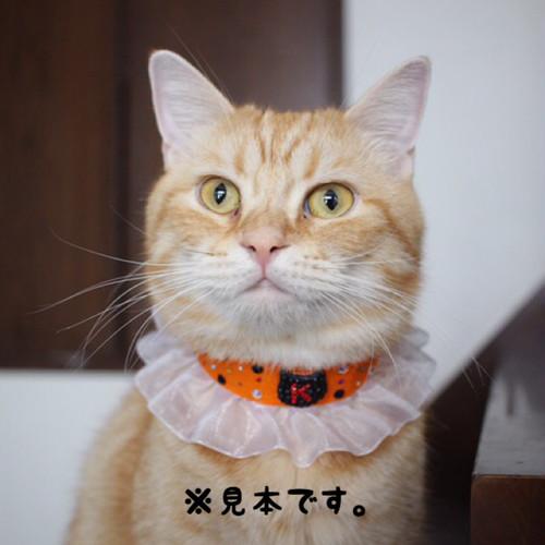 オレンジでハロウィンチョーカー(ハロウィン限定)