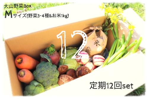 【定期12回分~毎週or隔週~】大山野菜Box Mサイズ【二回目以降の発送代込】